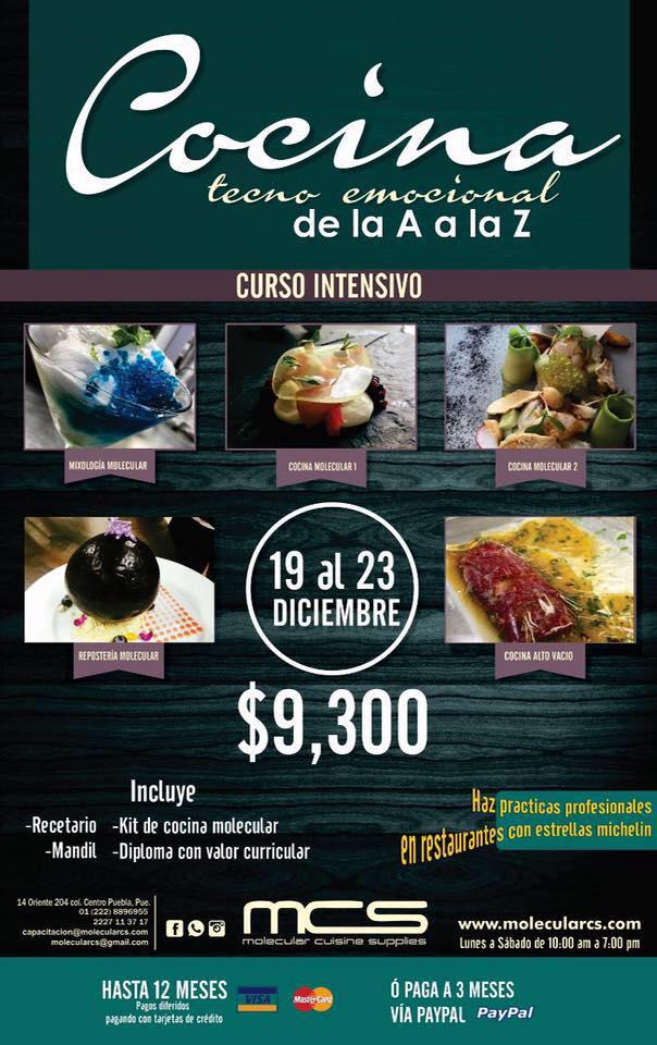 Curso de cocina tecnoemocional de la a a la z blog for Libros de cocina molecular