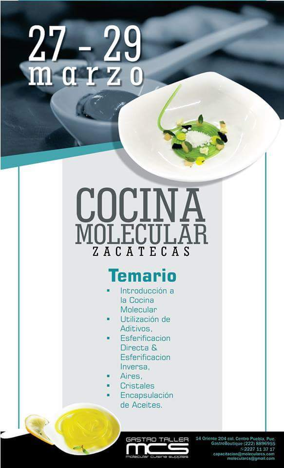 Curso de cocina molecular mcs zacatecas blog cocina for Libros de cocina molecular