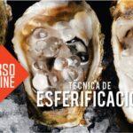 CURSO TÉCNICA DE ESFERIFICACIÓN + KIT DE ESFERIFICACIÓN