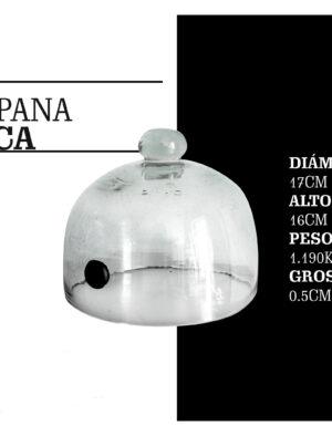 CAMPANA CHICA MCS MOLECULAR